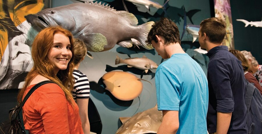 Darwin City Tours Museum (1)