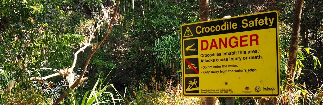 Can you swim in Darwin?