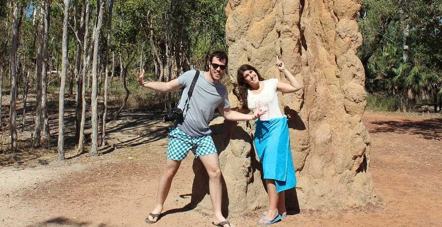 darwin termite mounds