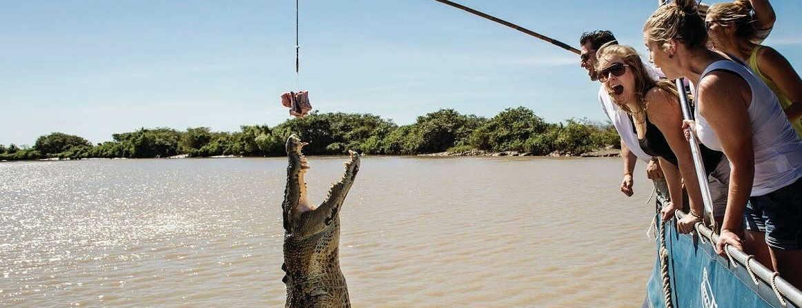 Jumping Crocodile Cruise from Darwin $105